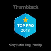 2018-pro-badge